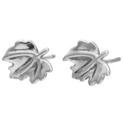 Kolczyki srebrne CEN-IKR0227